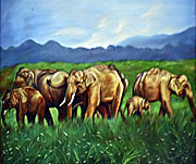 Asienreisender - Elephants in Laos