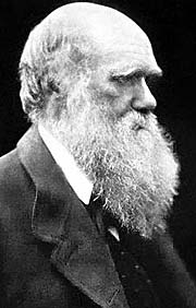 Charles Darwin in 1868 by M. Cameron