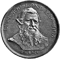 Darwin-Wallace Medal of the Linnean Society from 1908
