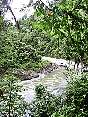 'The Jungle River Bohorok above Bukit Lawang' by Asienreisender