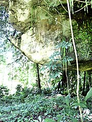 'Entrance to a Jungle Cave out of Bukit Lawang' by Asienreisender