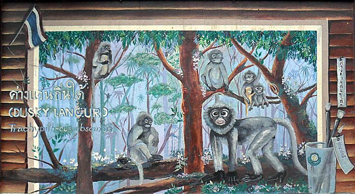 'Wallpainting of Dusky Langures in Dusit Zoo, Bangkok' by Asienreisender