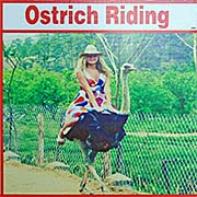 'Riding an Ostrich' by Asienreisender