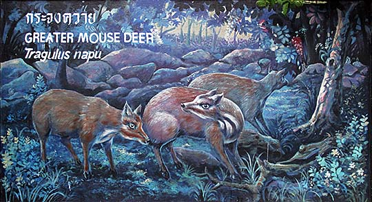 'Painting of Greater Mouse Deers | Dusit Zoo | Bangkok' by Asienreisender